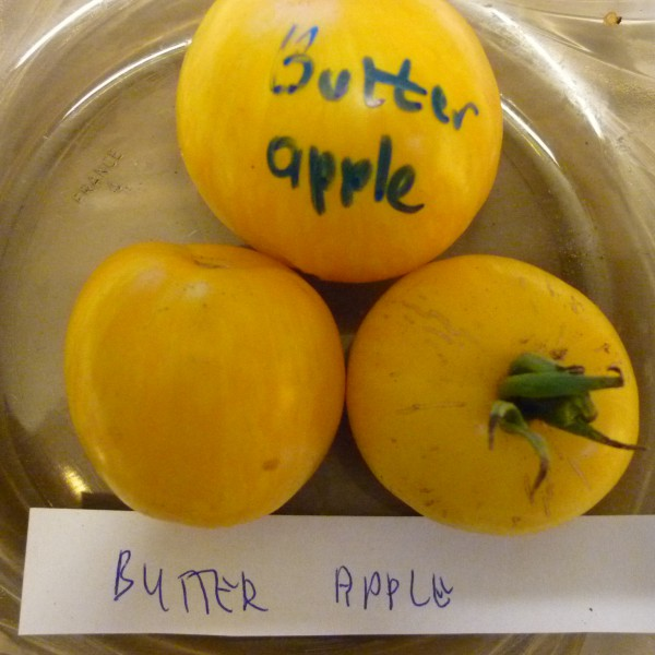 Butter Apple