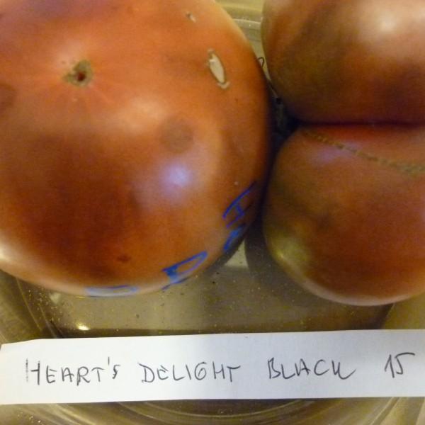 Heart's delight Black1