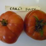 Earl's Faux