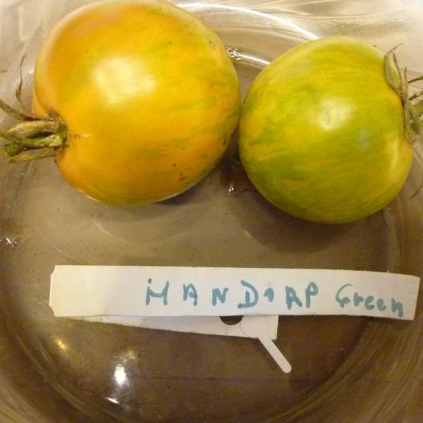 Handorp Green