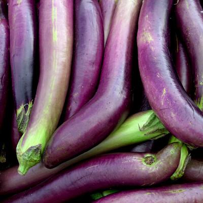waimanalo-eggplant
