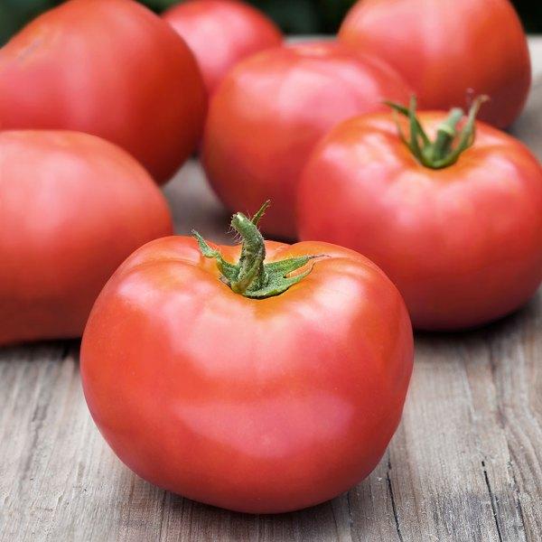 atkinson-tomato