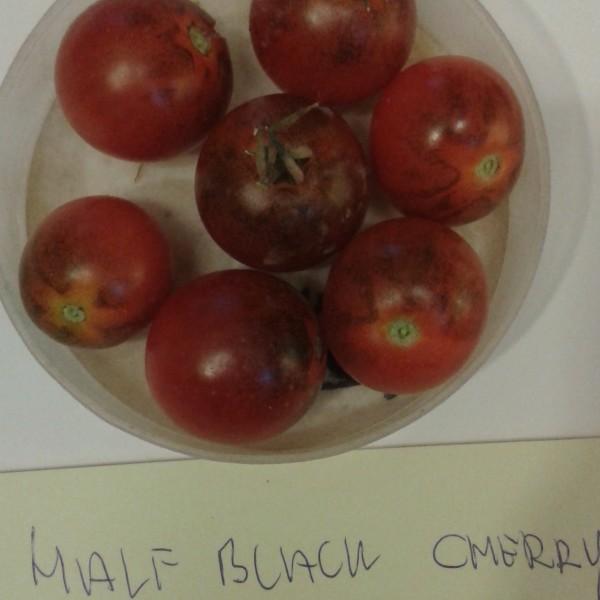 half-black-cherry