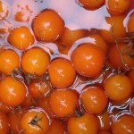dwarf orange cherry