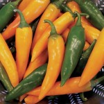 bulgarian-carrot-pepper